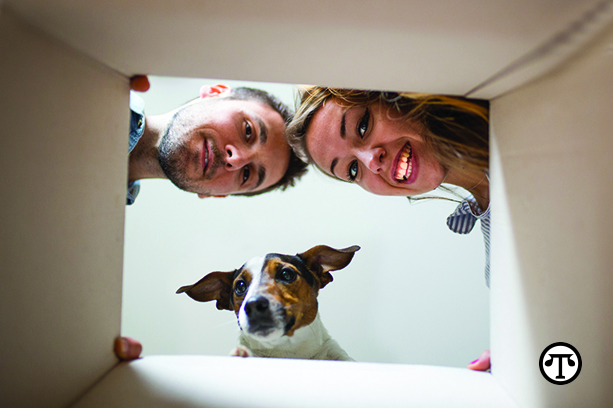 With proper preparation, your pets will be able to handle a household move with ease.