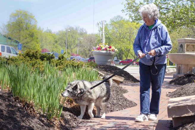 Furry friends help seniors feel less lonely - Buffalo Scoop