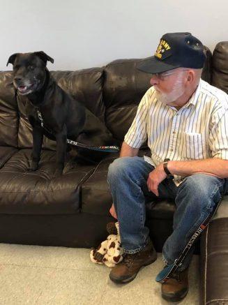 Niagara SPCA to waive adoption fee for veterans.