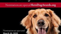The campaign seeks to identify and honor America's bravest heroes on both ends of the leash.