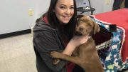 Spay & Neuter Angel Day is an initiative that provides pit bull type dogs free spay and neuter in 41 cities nationwide.
