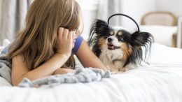 Research shows that more than one in seven dogs in the U.S. suffer from separation anxiety.