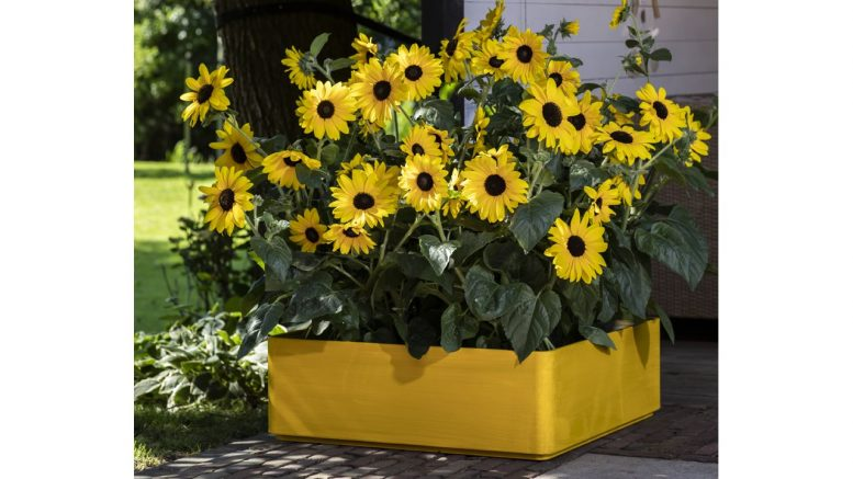 Research conducted late last year found that 86% of homeowners plan to continue gardening in 2021.
